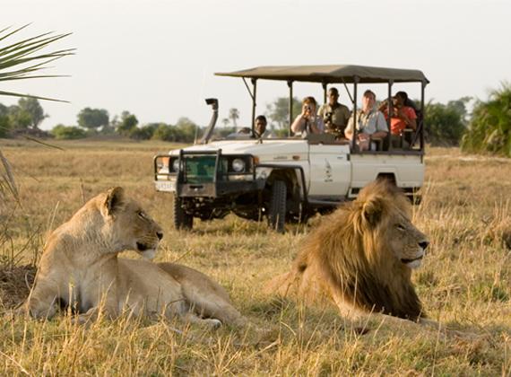 LTC Africa